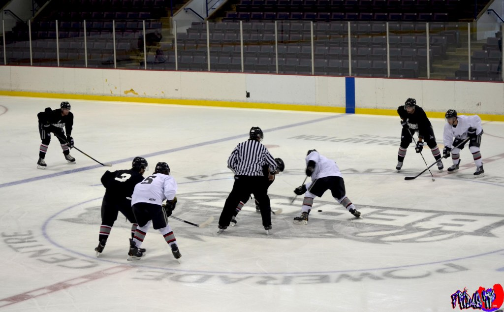 BRAMPTON BEAST HOCKEY TEAM