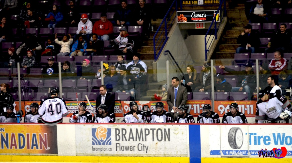BRAMPTON BEAST - MONDAY DECEMBER 30TH 2013 POWERADE CENTER