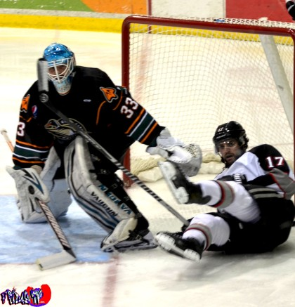 BRAMPTON BEAST VS QUAD CITY MALLARDS - MONDAY DECEMBER 30TH 2013